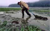 Saving Ocean Ecosystems